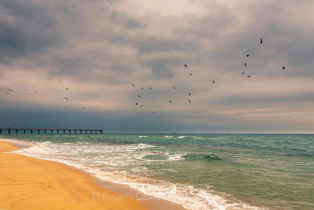 Сив есенен ден край плажа на Шкорпиловци