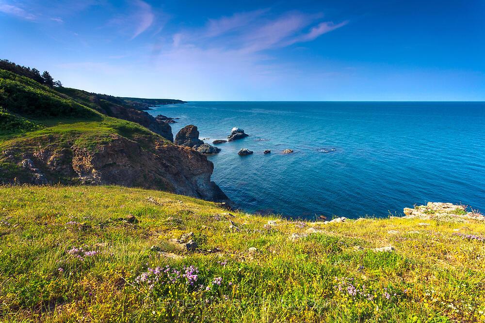 Крайбрежието на дивата Странджа
