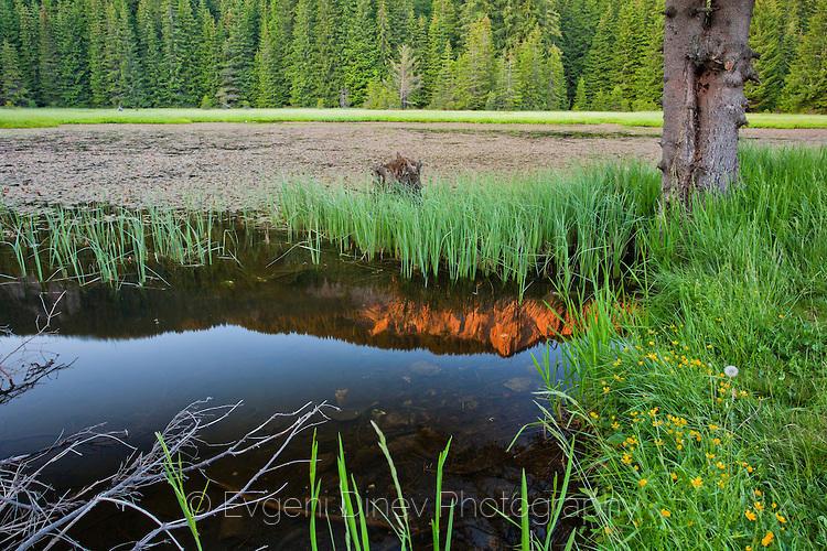 Тревистото езеро по залез