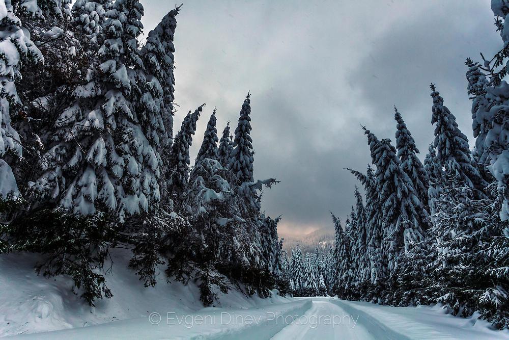 Величествена гора