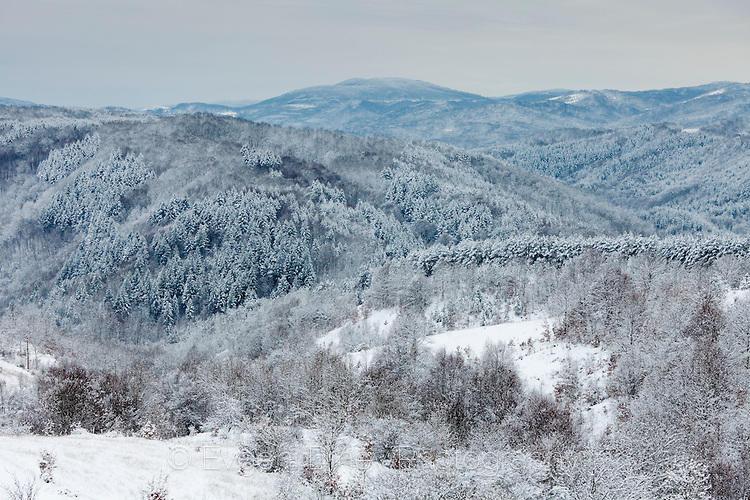 Странджа поръсена със сняг
