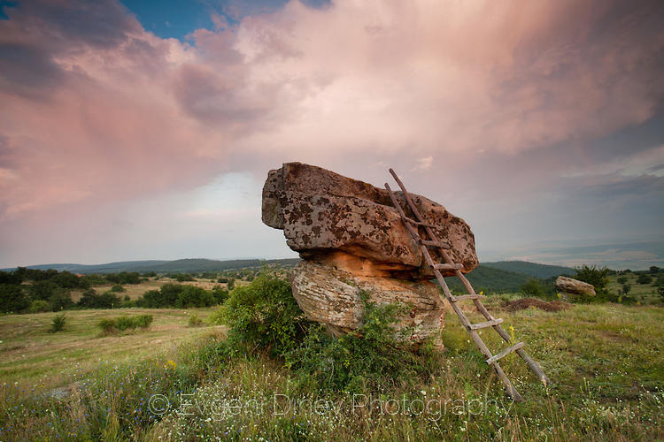 Скални гъби край село Сини Рид