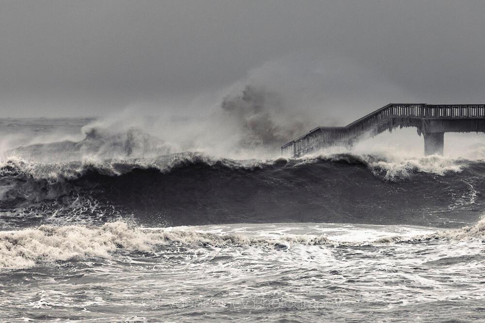 Черната вълна