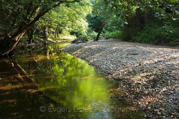 Зелена река
