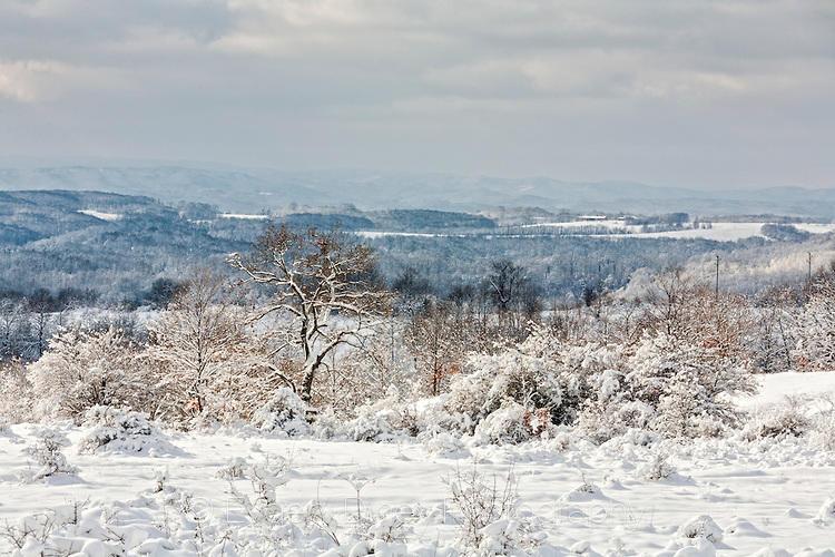 Странджа покрита със сняг