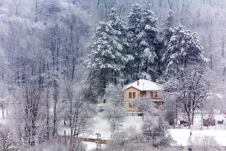 Местност Ковач през зимата