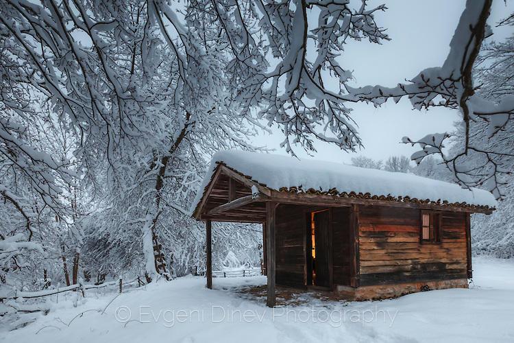 Дървена къщурка насред снежна гора