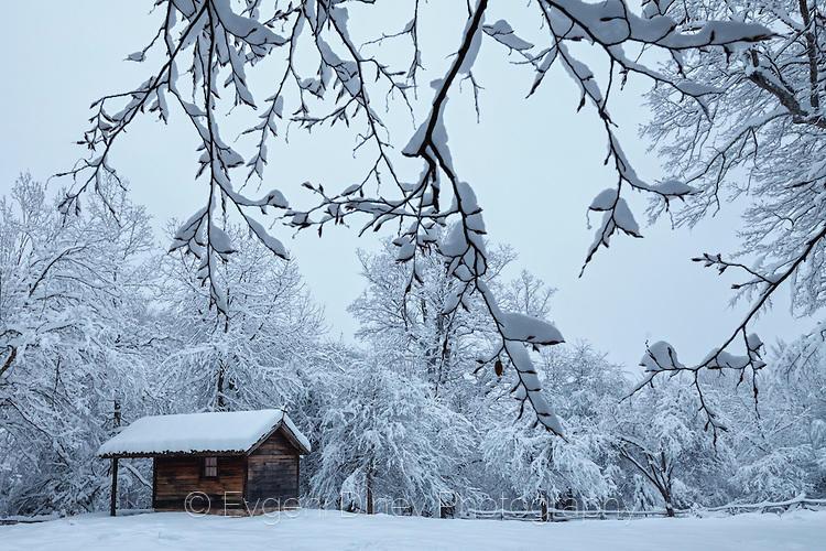 Къщурка насред снежна белота