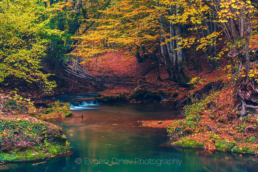 Есен в Странджа