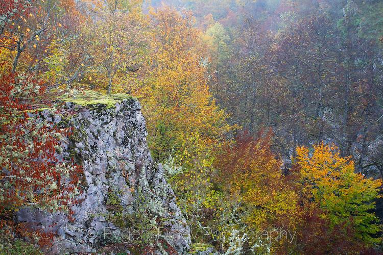 Странджа в есенна палитра