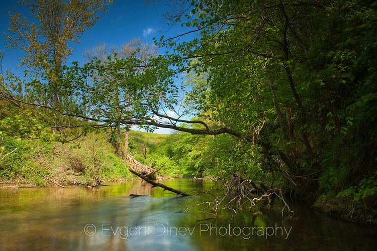 Резовска река покрай резерват Лопушна