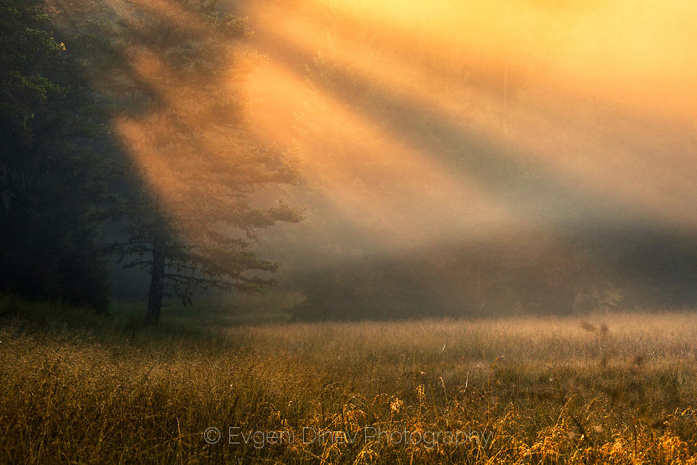 Слънчеви лъчи по изгрев