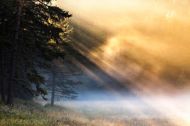 Лъчи през кълбо от дим