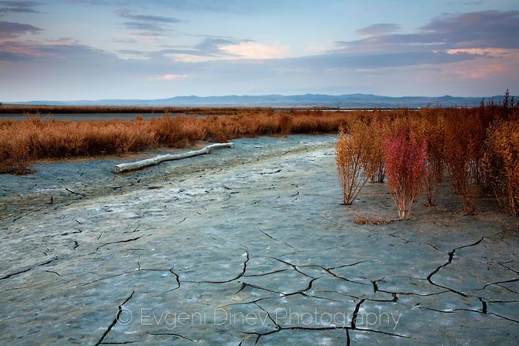 Atanasovsko ezero
