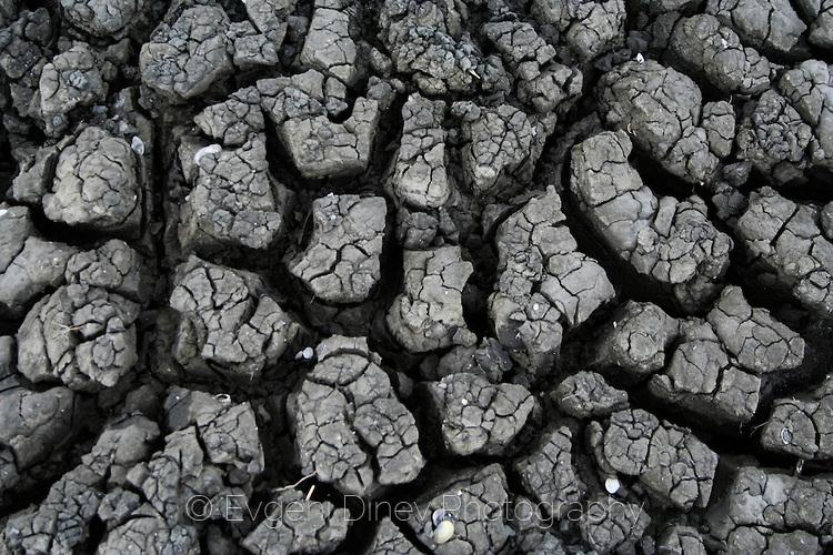 Текстура на почва