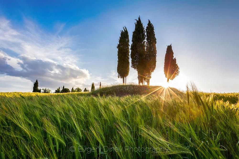 Пролетна Тоскана
