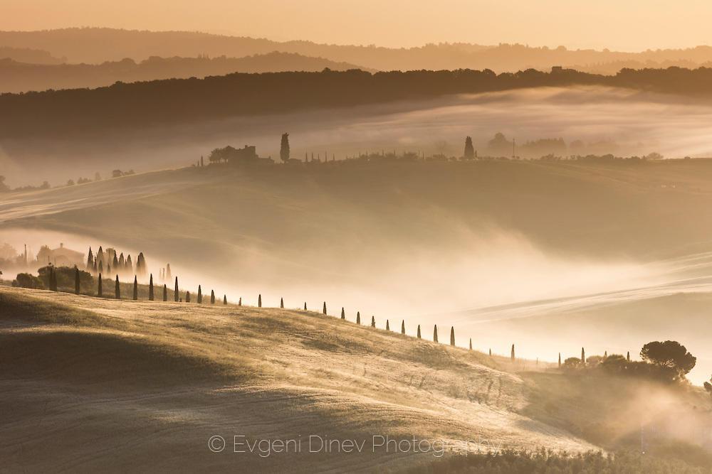 Златно Тосканско утро