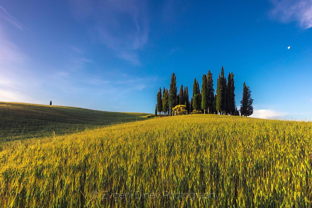 Слънчева Тоскана