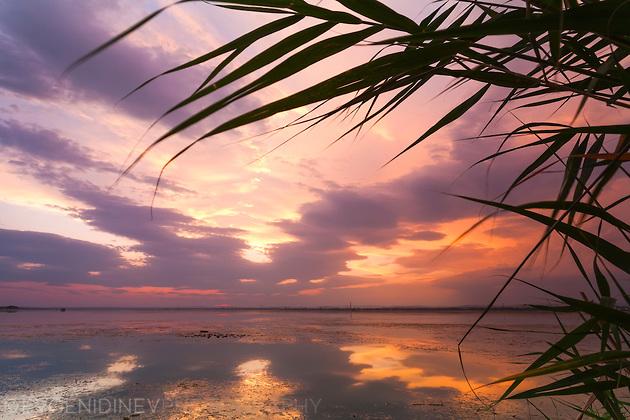 Езеро Вая