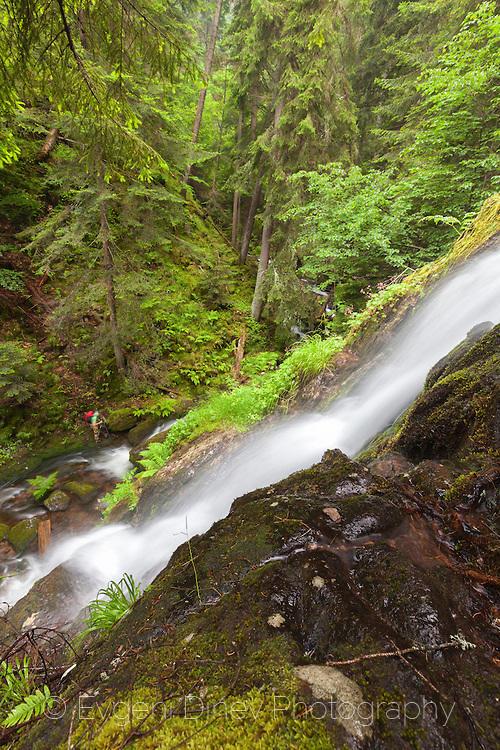 Бушуващ водоскок в Каньона на водопадите