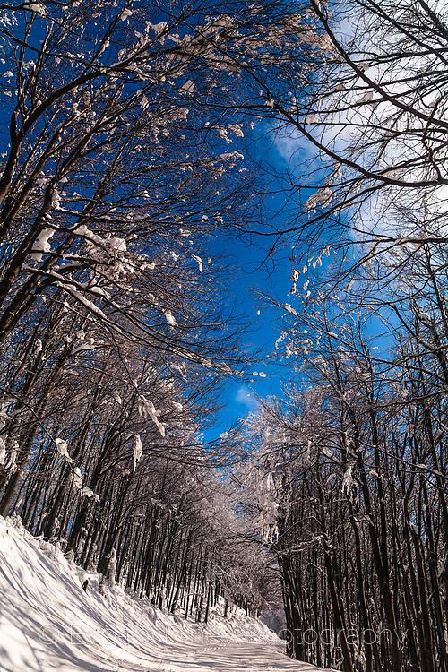 Снежна гора в Балкана