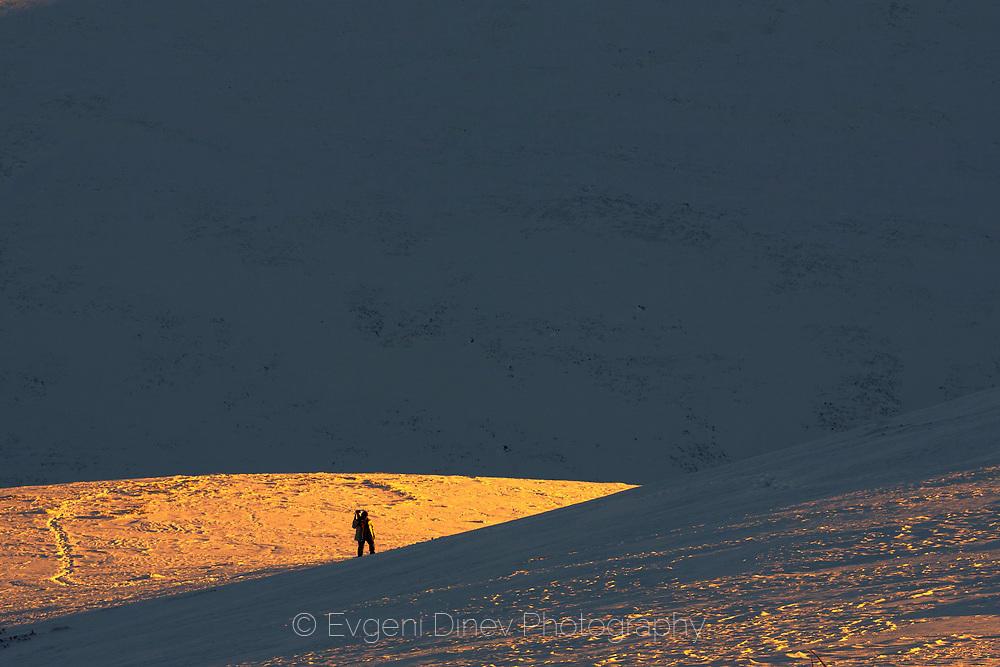 В бялата пустиня