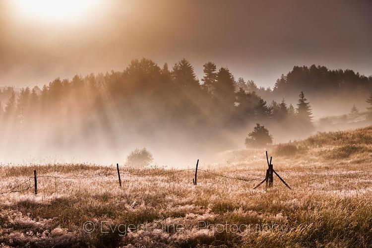 Лятно родопско утро
