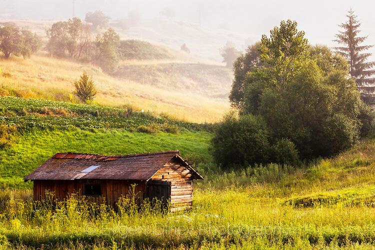 Дървена барака в зелена поляна