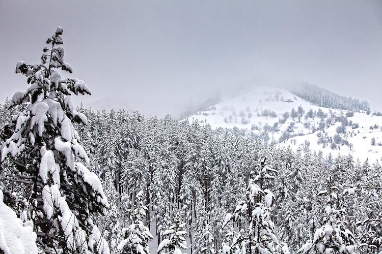 Снежна Юндола