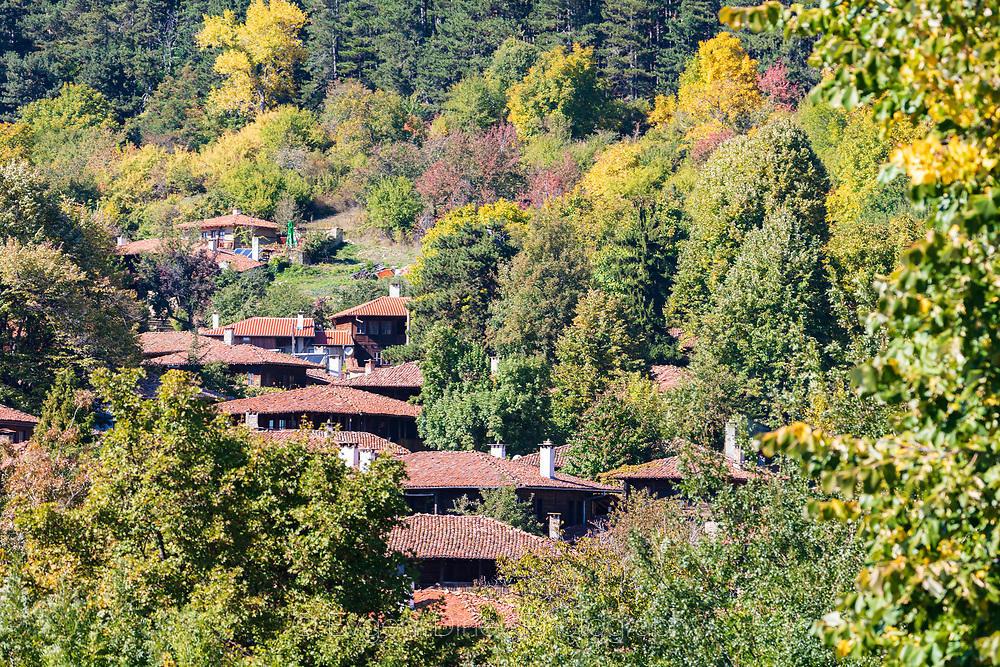 Жеравненски къщи потънали в есенна гора